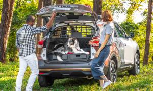Nissan Kicks For Pets: o carro amigável para o seu animal de estimação